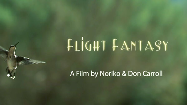 Flight Fantasy